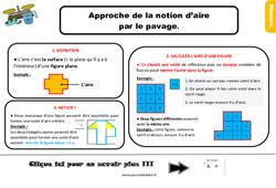 Leçon, trace écrite sur l'approche des unités d'aire par le pavage au Ce2