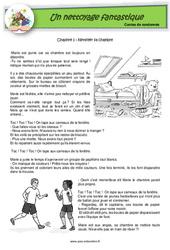 Un nettoyage fantastique - Ce1 - Ce2 - Contes de randonnée - Questionnaires
