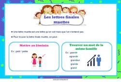 Les lettres finales muettes – Ce1 – Ce2 – Cm1 – Cm2 – Affiche