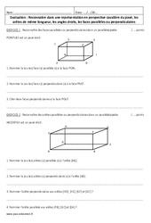 Perspective cavalière du pavé – 6ème – Evaluation