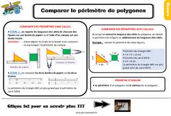 Leçon, trace écrite sur comparer le périmètre de polygones au Ce2