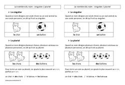 Nombre des noms – Ce2 – Leçon de grammaire