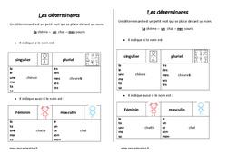 Déterminants - Ce1 -  Leçon -  Singulier - Pluriel et  Féminin - Masculin
