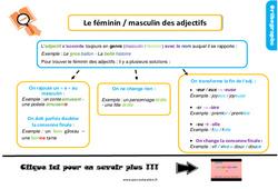 Leçon, trace écrite sur le féminin, masculin de l'adjectif au Ce1