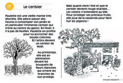 Le cerisier – CP – Lecture compréhension – Histoire illustrée - Niveau 3