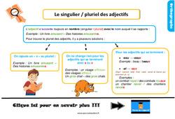 Leçon, trace écrite sur le singulier / pluriel des adjectifs au Ce1