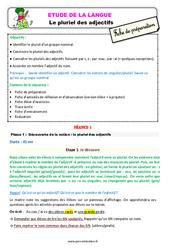 Le pluriel des adjectifs au Ce2 – Étude de la langue – Fiche de préparation