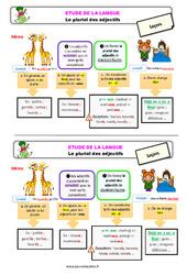 Le pluriel des adjectifs au Ce2 – Étude de la langue – Leçon