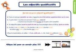 Leçon, trace écrite sur l'adjectif qualificatif – CE2