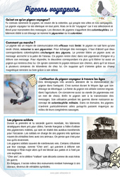 Les pigeons voyageurs- CE1 - CE2 - CM1 - Lecture documentaire