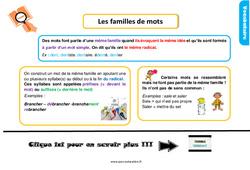 Leçon, trace écrite sur les familles de mots au Ce1