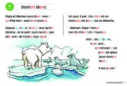 Ourson blanc – CP – Lecture compréhension – Histoire illustrée - Niveau 2