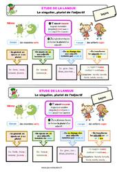 Le singulier, pluriel de l'adjectif – Ce1 – Étude de la langue – Leçon
