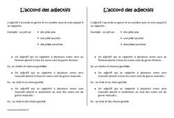 Pluriel des adjectifs – Cm1 – Leçon