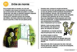 Drôle de momie – CE1 – Lecture compréhension – Histoire illustrée – Niveau 3