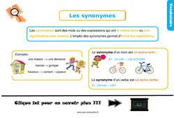 Leçon, trace écrite sur les synonymes au Ce1