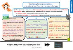 Leçon, trace écrite sur les homophones grammaticaux : « ce » / « se », « c' » / « s' » et « ces » / « ses » au CM2