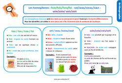 Leçon, trace écrite sur les homophones lexicaux: foie/fois/Foix/foi - sot/seau/sceau/saut - voie/voix/ vois/voit au Cm1
