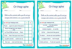 Les homophones : a / à - Ce1 - Ce2 - Rituels - Orthographe