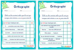 Les homophones : ce / se - Ce1 - Ce2 - Rituels - Orthographe