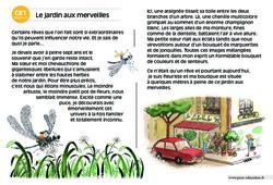 Le jardin aux merveilles – CE1 – Lecture compréhension – Histoire illustrée - Niveau 3