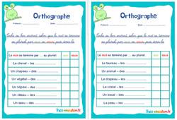 Pluriel des noms en aux ou eaux - Ce1 - Ce2 - Rituels - Orthographe