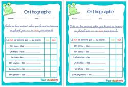 Pluriel des noms en ous ou oux - Ce1 - Ce2 - Rituels - Orthographe
