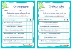 Le féminin des noms en ie et ue - Ce1 - Ce2 - Rituels - Orthographe