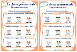 Déterminant, nom et verbe - Ce1 - Ce2 - Rituels - La classe grammaticale