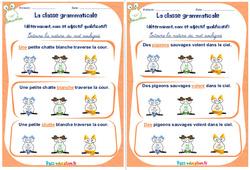 Déterminant, nom et adjectif qualificatif - Ce1 - Ce2 - Rituels - La classe grammaticale