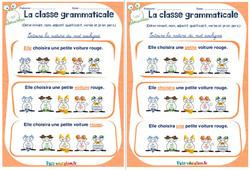 Déterminant, nom, adjectif qualificatif, verbe et pronom personnel - Ce1 - Ce2 - Rituels - La classe grammaticale