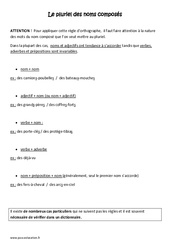 Pluriel des noms composés - Cm2 - Leçon