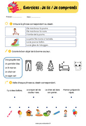 Lire, écrire et comprendre des mots/des phrases - CP - CE1 : Exercices de lecture