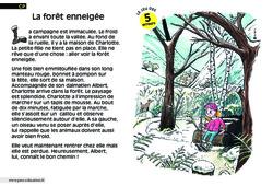 La forêt enneigée - Cp - Lecture - Compréhension fine - Inférences