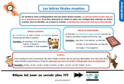 Leçon, trace écrite sur les lettres finales muettes au CM1