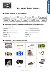 Exercices, révisions sur les lettres finales muettes au CM1 avec les corrections