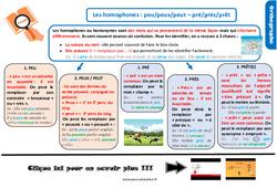 Leçon, trace écrite sur les homophones : peu/peux/peut – pré/près/prêt au Cm2
