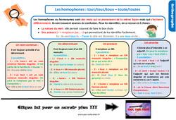 Leçon, trace écrite sur les homophones : tout/tous/toux – toute/toutes au Cm2
