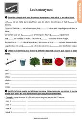 Exercices, révisions avec les corrections sur les homonymes au Cm2