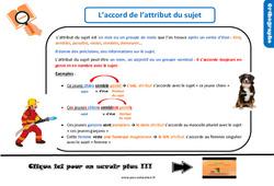 Leçon, trace écrite sur l'accord de l'attribut du sujet au Cm2