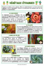 Végétaux étranges - Ce2 - Cm1 - Lecture documentaire