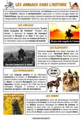 Les animaux dans l'histoire - Cm1 - Cm2 - Lecture documentaire