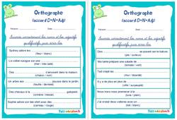 Accord déterminant, nom et adjectif - Cm1 - Cm2 - Rituels - Orthographe