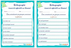 Noms et adjectifs au féminin - Cm1 - Cm2 - Rituels - Orthographe