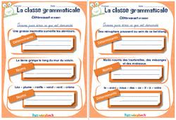 Déterminant et nom - Cm1 - Cm2 - Rituels - La classe grammaticale