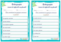 Noms et adjectifs au pluriel - Cm1 - Cm2 - Rituels - Orthographe