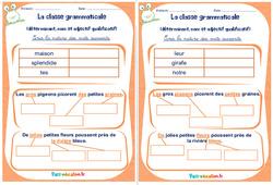Déterminant, nom et adjectif qualificatif - Cm1 - Cm2 - Rituels - La classe grammaticale