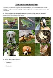 Animaux ovipares et vivipares – Exercices – Cm1 – Cm2 – Sciences – Cycle 3