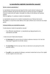 Reproduction végétale asexuée  – Leçon – Ce2 – Cm1 – Sciences – Cycle 3