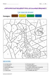 Types de phrases – Ce1 – Coloriage magique